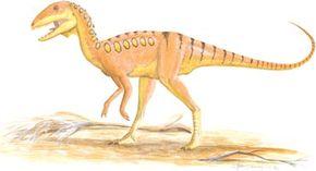 Shanshanosaurus houyanshanensis See more dinosaur images.