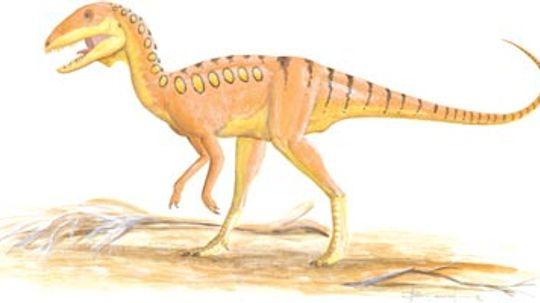 Shanshanosaurus