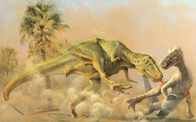 Tyrannosaurus attacks an Edmontosaurus