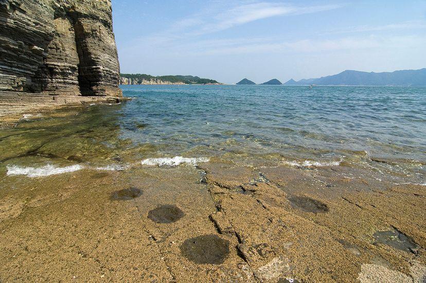 dinosaur footprints in water