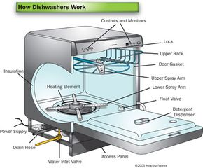 Dishwashers have become a staple in just about every kitchen.