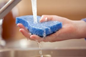 Kitchen sponges are among the most germ-ridden objects in your entire house. But can they be disinfected?