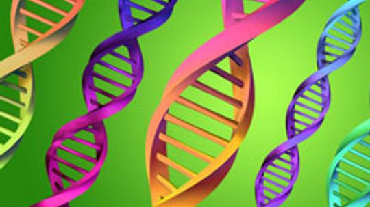 Is the U.S. government building a Gattaca-level DNA database?