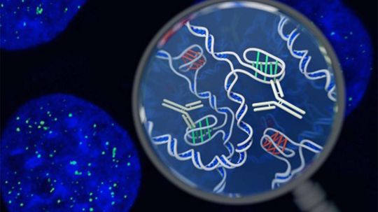 Mysterious New DNA Structure Found in Living Human Cells