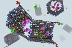 Behold, the DNA robot. The purple fragments represent the antibody payload.