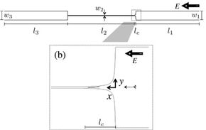 A schematic of Doyle's proposed machine where W is width, L is length, E is electric field, X is horizontal motion and Y is vertical motion.