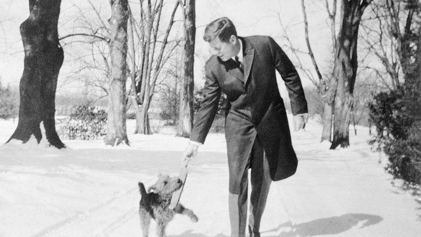 Kennedy, Charlie, dog