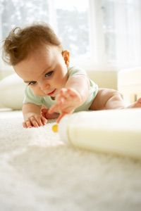 """The way a baby learns the word """"bottle"""" is similar in some ways to how a dog learns words."""