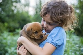 Dogs really do advance and age faster than humans, but not quite at the same rate at all times. Some years the rate is much slower than others for our furry friends.