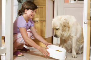 Should you change the type of food you give your dog depending on how old he is? See more dog pictures.