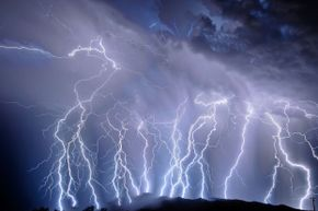 Dogs can smell the ozone of lightning before you can see the flash.