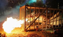 """Guests at the 2005 world premiere of the """"Harry Potter and the Goblet of Fire"""" film in London included a life-sized, fire-breathing Norwegian Ridgeback mechanical puppet."""