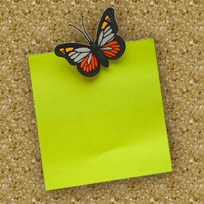 Corkboards, which are often chore boards, could use a little whimsy and decoration. A festive butterfly tack is just one way to accomplish that.