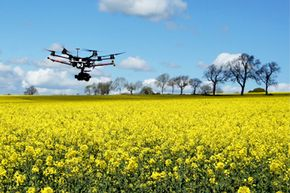 A new generation of drones is aiding our understanding of the environment.