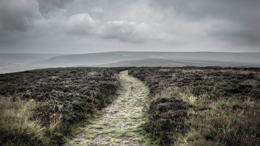 Path in the North York Moors National Park