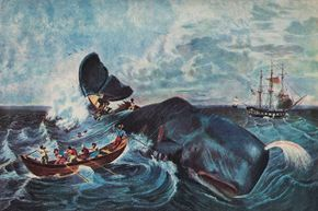 """The giant, ancient sperm whale Leviathan (or Livyatan) melvillei was named for """"Moby Dick"""" author Herman Melville and the Biblical monster Leviathan -- although it likely was scarier than either literary creature."""