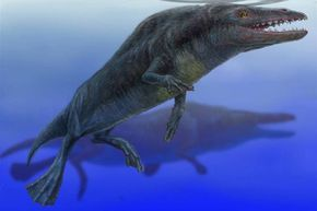Although it didn't much resemble modern whales, Rodhocetus possessed many whalelike traits such as fat pads that helped them hear underwater.