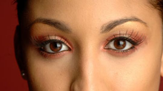 Eyelash Strips vs. Individual Lashes: Which is right for me?