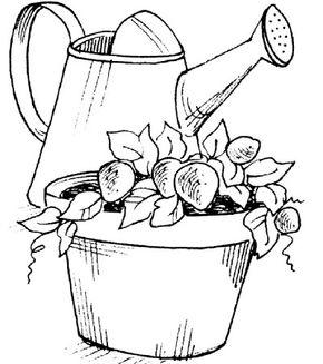 Learn to make the Strawbarrel Strawberry Planter.