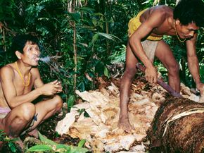 If all humans still led the hunter-gatherer lifestyle of the Mentawai people of Indonesia, we would have reached our carrying capacity long ago.