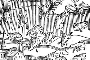 This illustration depicts a rain of frogs recorded in 1355.