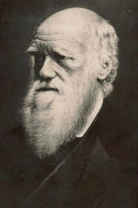 Charles Darwin spent 39 years studying the humble earthworm and concluded that they are very valuable to the Earth's processes.