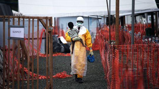 How Ebola Works