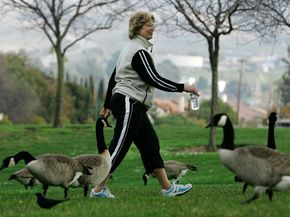 Some eco-therapists prescribe something as simple as getting out and walking to ease eco-anxiety.