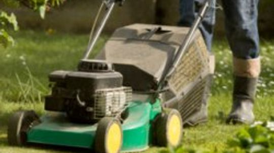 5 Tips on Eco-friendly Lawn Care