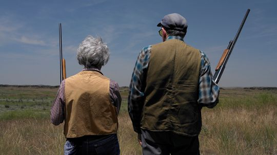 The 'Perfect Storm' of Elderly Dementia and Guns