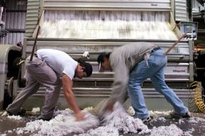 Two employees of the Holmes Gin Company collect some cotton that overflowed from the gin machine. Whitney's cotton gin is only one of his inventions that reshaped American industry.