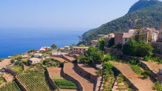 Ultimate Guide to the Emporda Wine Region