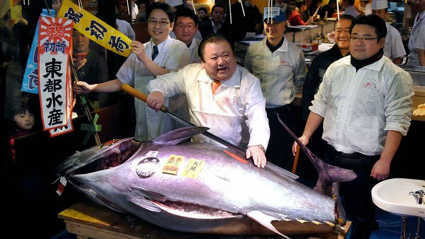 auction tuna, Japan