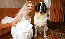 Why not invite the pooch over for some family photos?
