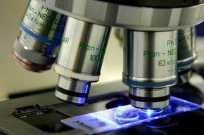 Epigenetics might help us prevent cancer.