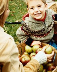 It's no secret that apples are full of nutrients. They just might be the perfect fall food.