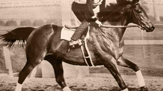 Top 10 Famous Racehorses