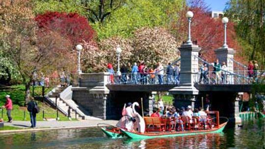 Family Vacations: Boston's Public Gardens