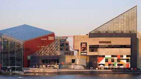 Family Vacations: National Aquarium Baltimore