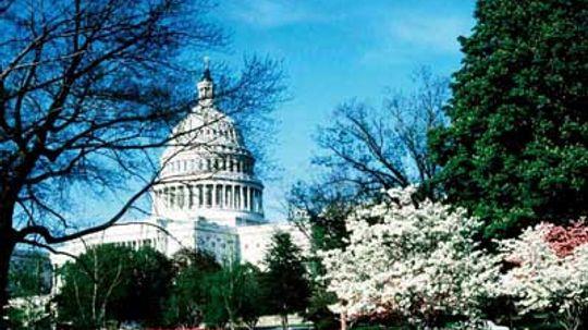 Family Vacations: U.S. Capitol