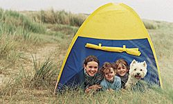 Preparing your dog in advance can help it feel more comfortable at your campsite.
