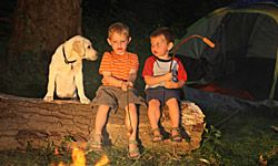 Keep tabs on your dog while camping.