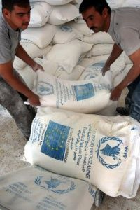 These World Food Programme workers are delivering an allocation of fortified flour to a warehouse in the West Bank Palestinian town of Dura. The 2008 spike in food prices was a blow to the world's hungry.
