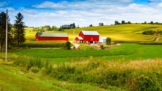 10 Tax Tips for Farmers