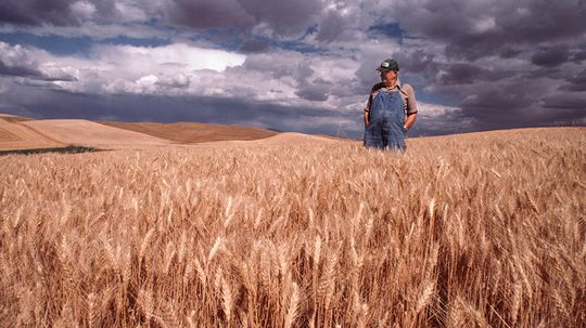 Suicide Afflicts Farmers at Rate Shockingly Higher Than All Other Jobs