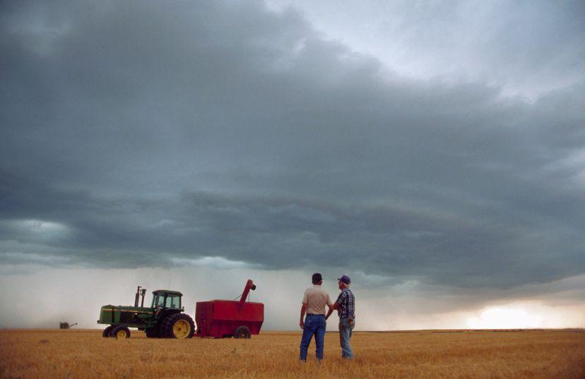farmer stands in field
