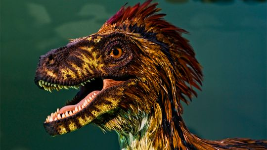 Why Won't Hollywood Depict Dinosaurs With Feathers?