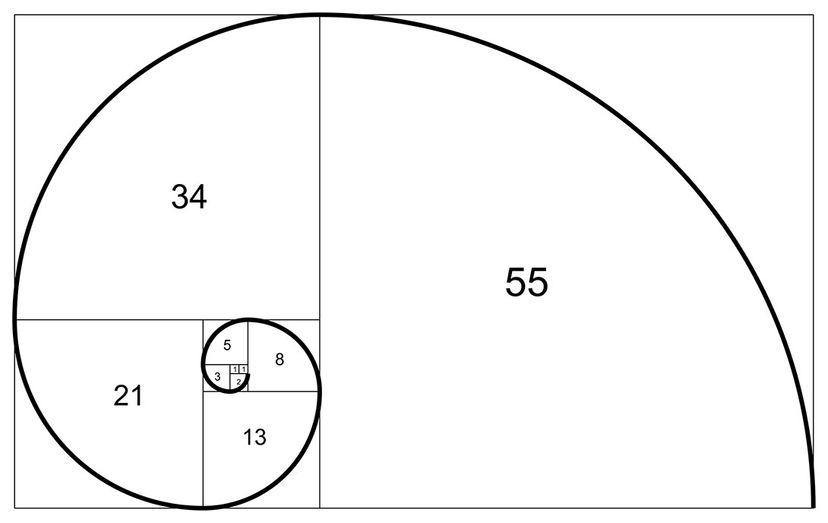 fibonacci illustration