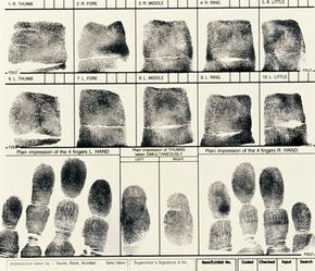 Traditional ink fingerprints typically contain rolled and flat prints.