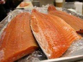 Wild and farmed salmon fish filets at the San Francisco Fish Company.